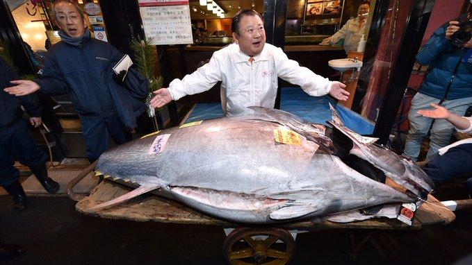 Kiyoshi Kimura de la chaine Sushi Zenmai, le roi du thon remporte les enchères à Tokyo en 2020 avec 1,5 million d'euros - Sushiprod